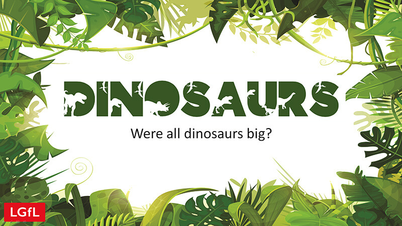 Teaching slides: Were all dinosaurs big?