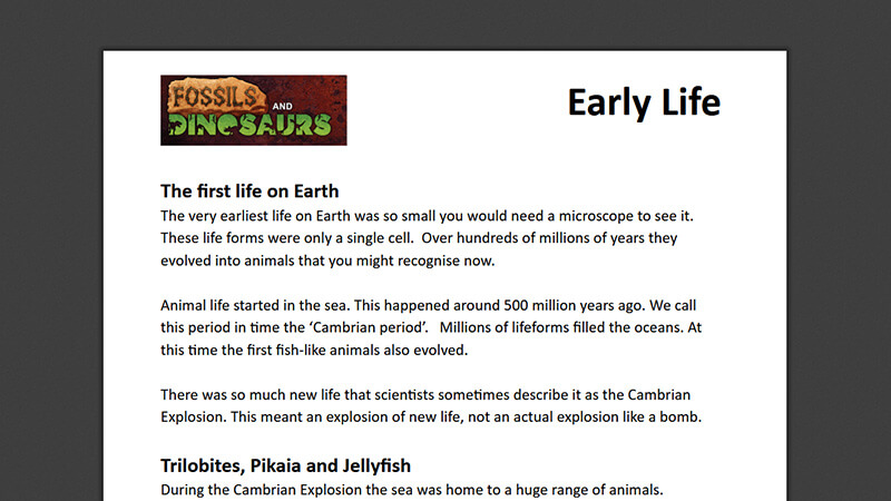 ACTIVEWORKSHEET: Early Life
