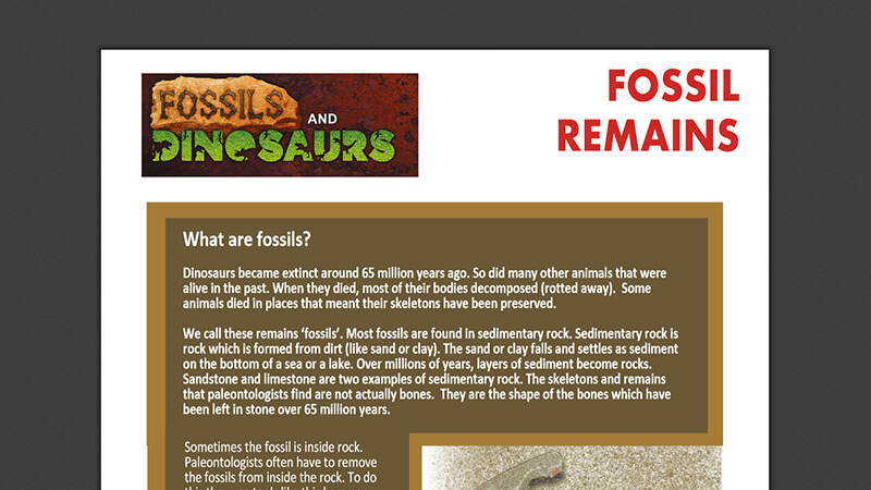 ACTIVEWORKSHEET: Fossil Remains