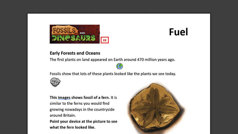ACTIVEWORKSHEET: From Fossil to Fuel